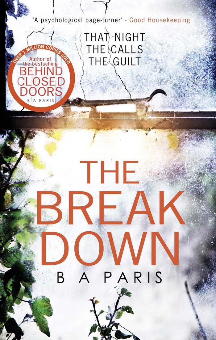 Download ebook The Breakdown