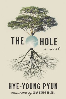 The Hole by Hye-young Pyun ebook epub/pdf/prc/mobi/azw3