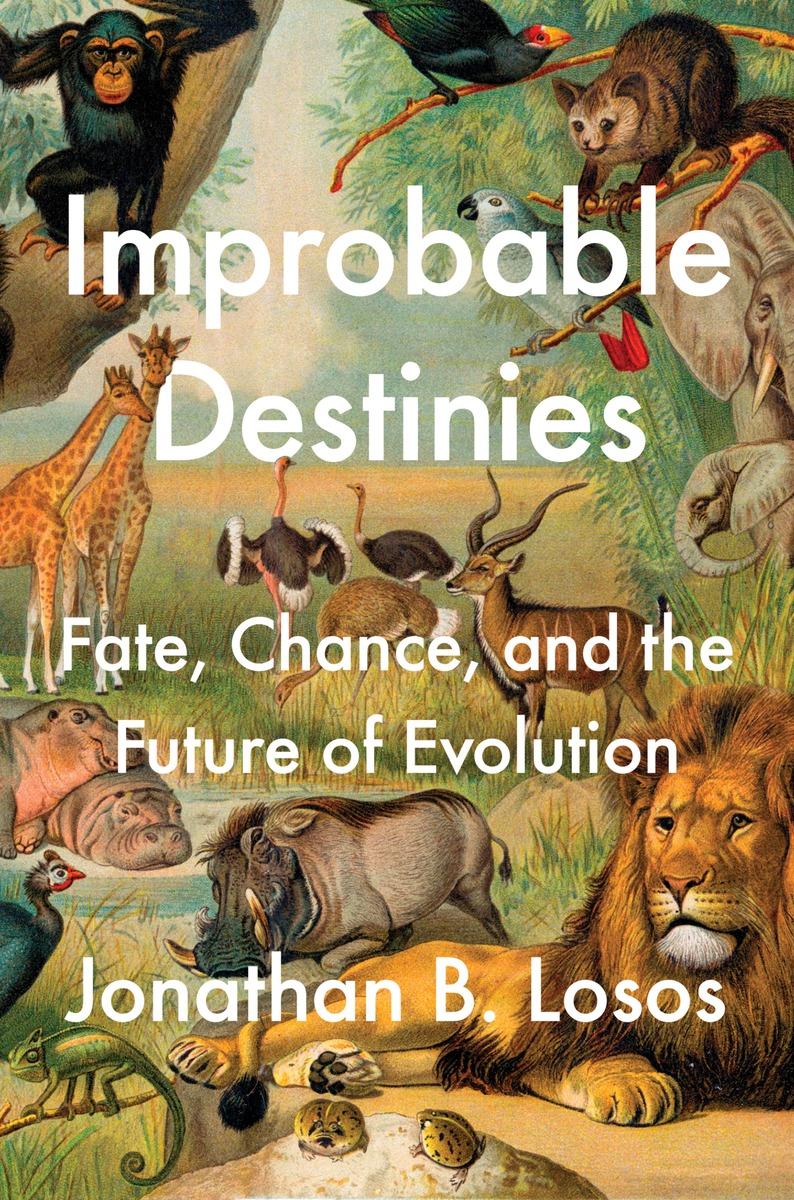 Download ebook Improbable Destinies