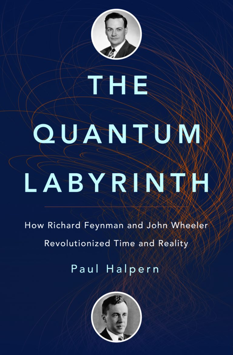 Download ebook The Quantum Labyrinth