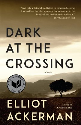 Dark at the Crossing ebook epub/pdf/prc/mobi/azw3 download free