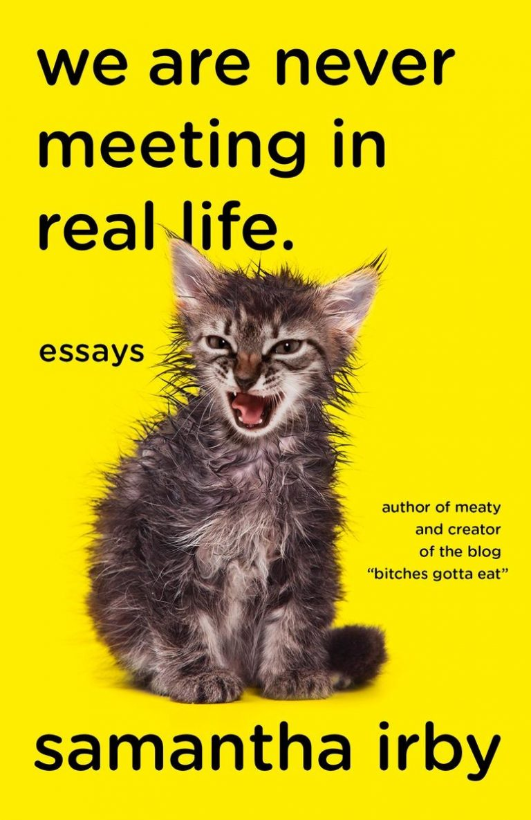 Download ebook We Are Never Meeting in Real Life
